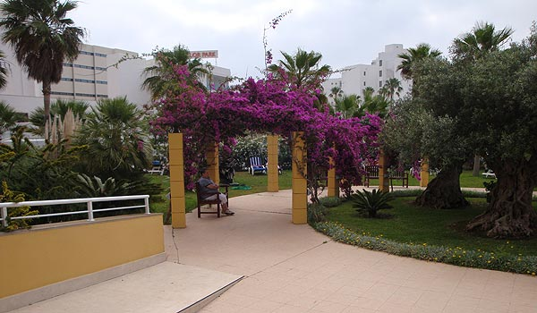 600x350-Cala-Milor-Garden-hotel-tuin1